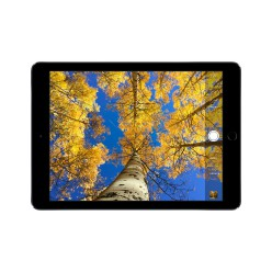 Apple iPad Air 2 Wi-Fi 128GB Space Gray Новый